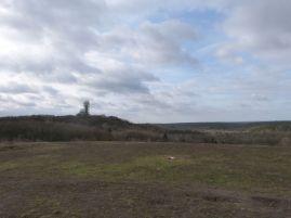 Blick über den Grunewald und hinüber zur Abhörstation auf dem Teufelsberg