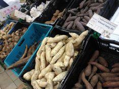 Und in echt: Süßkartoffeln - was für eine Auswahl!