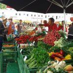 Gemüse in Hülle und Fülle